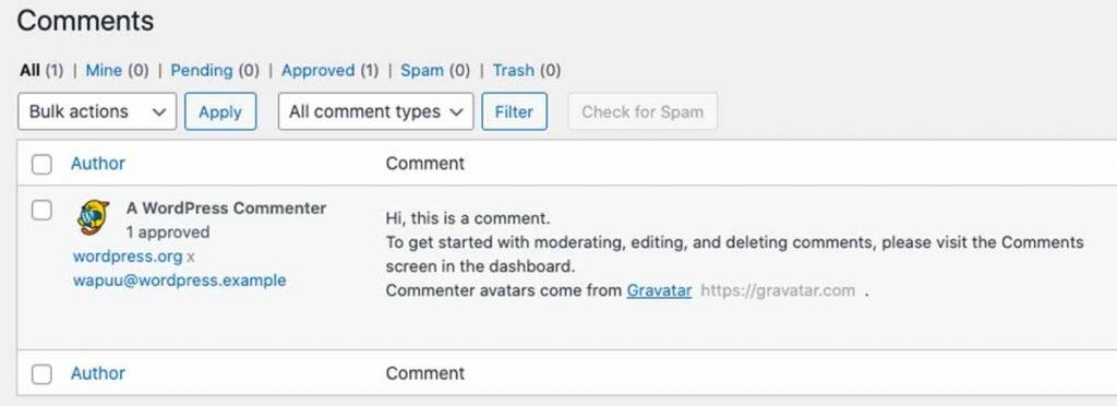 Delete Dummy Comments WordPress
